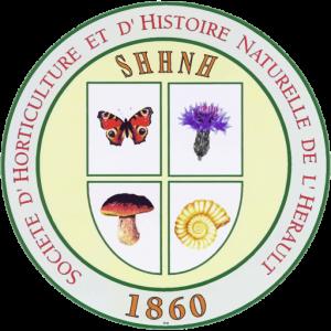 cropped-shhnh_logo.png