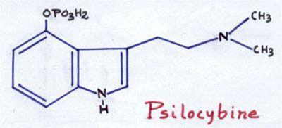 Figure 2 - Formule chimique de la Psilicybine