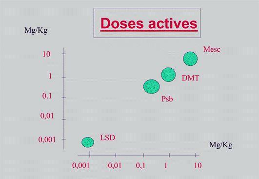Figure 3 - Doses actives de la psilocybine (Psb), de la diméthyltryptamine (DMT), de la mescaline (Mesc) et du L. S. D. (modifié d'après C.Lafille, 1965).