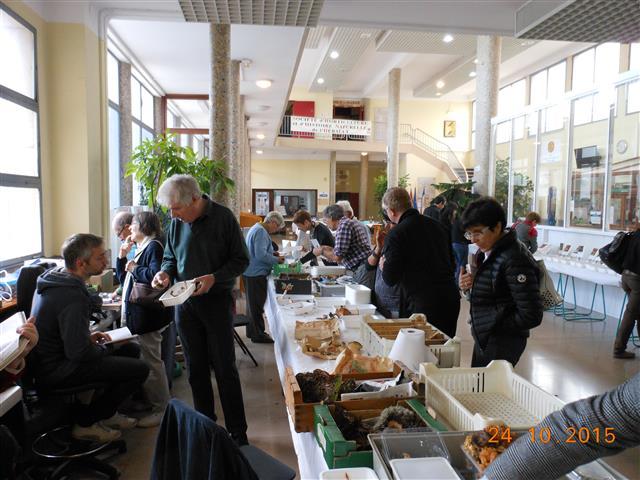Salon 2015 - Tri et détermination des champignons