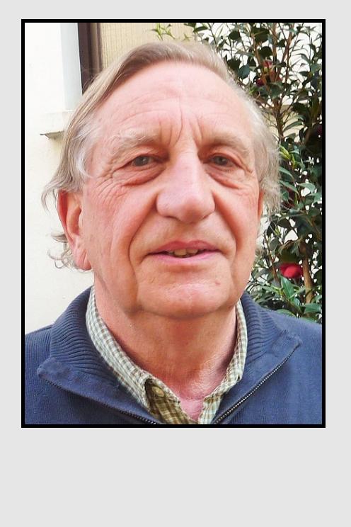 Mousain Daniel 2009-2016
